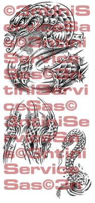Product picture 3 x Tattoo flashes - Underskin: Snakes
